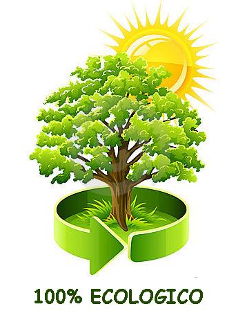 OM legno ecologico snc